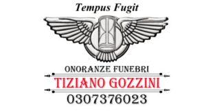 gozzini